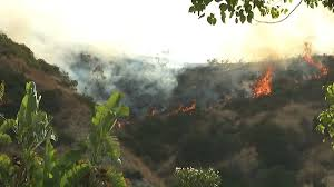 Definition For Wildfire by California Wildfire Reaches Giant Sequoia Grove Fox6now Com