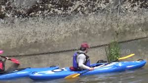 thames river boats dogs canoeists help rescue dog from river thames in london youtube