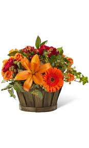 Autumn Flower Grower Direct Flowers By Occasion Autumn Fall Flowers