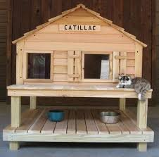 How To Keep Cats Off Outdoor Furniture by Best 25 Cat Houses Ideas On Pinterest Diy Cat Tree Diy Cat