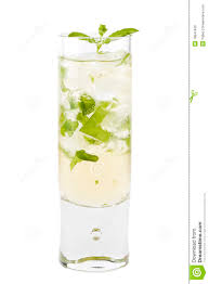 mint julep cocktail mint julep cocktail stock photo image 18847400