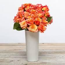 orange roses monterey orange bouquet the bouqs co