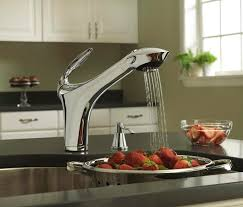 danze pull out kitchen faucet universal ceramic tiles new york kitchens kitchen