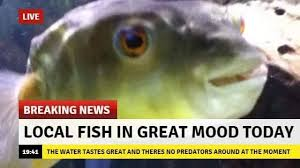Breaking News Meme - tfw the seafood joint down the corner shuts down breaking news