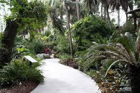 Botanical Garden Sarasota Reviews Of Kid Friendly Attraction Selby Botanical Gardens