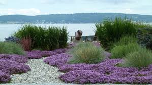 pebbles landscaping design ideas landscape beach style with ground