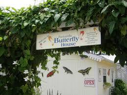 panhandle butterfly house navarre destination fl panhandle