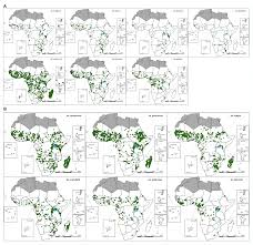 bureau avec ag e int r a geo coded inventory of anophelines in the afrotropical region