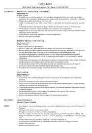 copy editor resume copyeditor resume sles velvet