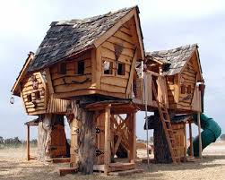 14 best tree house living images on architecture