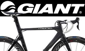 cal coast bicycles san diego u0027s best selection of giant ibis