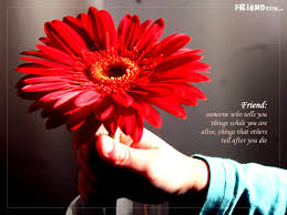 quote friendship spanish quotes about flowers in spanish gallery for gt flowers