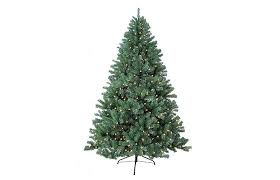 the complete tree buying guide overstock