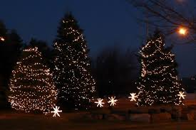 pictures of lights on trees home design inspirations