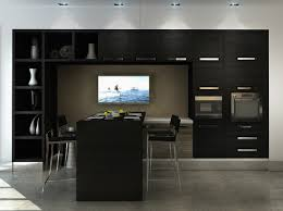 Kitchen Cabinets Open Shelving Extraordinary Wall Mounted Kitchen Cabinets Open Shelves And Door