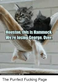 Purrrfect Meme - houston this is hammock were losing george over the purrfect fucking
