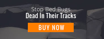 Bed Bug Fogger An Inconvenient Truth About Bed Bug Foggers Bedbug Store