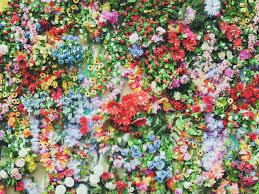 the 5 most beautiful gardens in omaha u2014 zinnia omaha