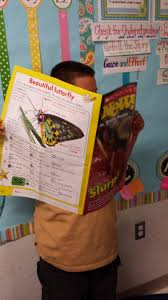 scholastic news thanksgiving tales of a first grade teacher countdown day 3 and 4 and some
