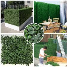 Landscape Design Online by Garden Design Garden Design With Privacy Plants For Screening