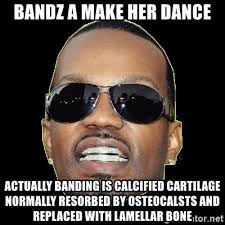 Bands Will Make Her Dance Meme - bandz a make her dance actually banding is calcified cartilage