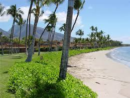 puamana townhouse luxurious vacation rentals maui townhomes
