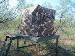 Primos Blinds Double Bull Which Ground Blind Should I Buy Texasbowhunter Com Community