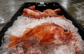 why the seafood industry is rebranding