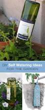 self watering planters diy wine bottle best 4k wallpapers