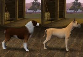 sims 3 boxer dog ts4 pets age stages u0026 breed sizes other pets u2014 the sims forums