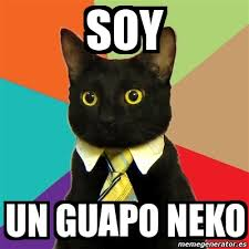 Meme Neko - meme business cat soy un guapo neko 3678083