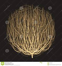 tumbleweed tumbleweed drawing vector stock vector image of fresh 59495238