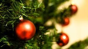 christmas tree how to keep your christmas tree alive through the holidays