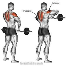 Bench Press Shoulder Impingement Weight Training Guide Weighttrainingguide Instagram Photos