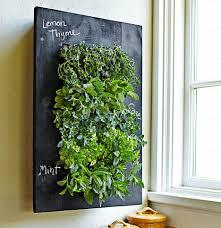 diy herb garden indoor kitchen herb garden ikea bittergurka hack diy herb garden