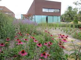 a prairie garden with a modern house a contrast done right by
