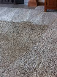 affordable carpet cleaning service in spokane wa 99217