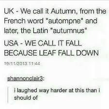 Autumn Memes - england america fall autumn lol pinterest autumn memes
