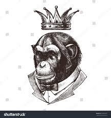 king monkeys chimpanzees tuxedo crown vector stock vector