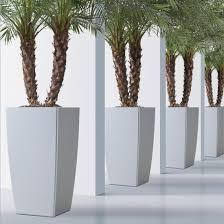 commercial outdoor planters indoor planters for hotels t2 site