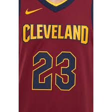 nike lebron 23 cleveland cavaliers icon edition authentic