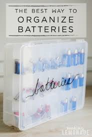 The Best Ways To Organize - the best way to organize batteries making lemonade