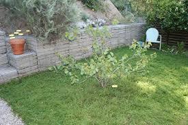 Wpa Rock Garden by Tpfnpgt Sunday Fresh Legs And New Batteries U2026 Queen Of The Dirt