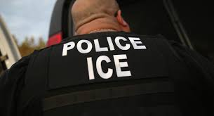 ice operating freely in new york city courthouses u2014 for now