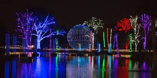 Zoo Lights Phoenix Missed Phoenix Zoolights Your Last Chance To See It Is This Week