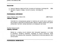 download slp resume examples haadyaooverbayresort com