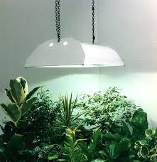 sunlight l for plants indoor garden light bulbs grow light bulbs for indoor plants