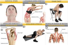 Neck Exercises At Desk Six Upper Back Stretches To Loosen Your Neck And Shoulder Muscles