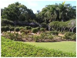 Bundaberg Botanic Gardens Top Attractions In Bundaberg Australia