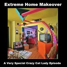 Funny Cat Lady Memes - best pics of the crazy cat lady meme